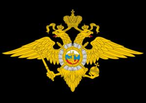 Иностранные болельщики обязаны покинуть Россию до 12 июля - МВД